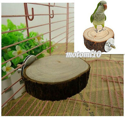 Top! Wooden Coin Parrot Bird Cage Perches Stand Platform Pet Budgie Hanging Toy#