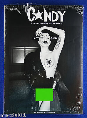 Candy 7Th Issue Winter 2013-2014 The Transversal Style Magazine Cover Lady Gaga