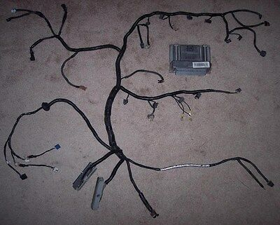 Wiring Harness Rewire Service Ls1 - Go Wiring Diagrams on