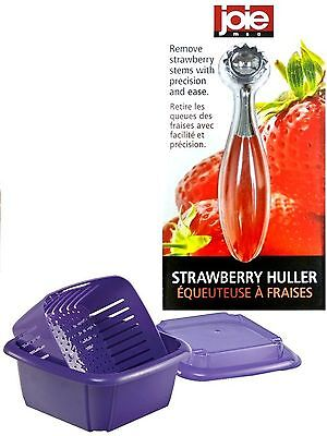 NEW Hutzler 3-in-1 Berry Box-Purple  And Stainless Steel Strawberry Huller- Joie
