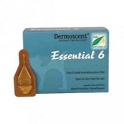Dermoscent Essential 6 Spot-On chats
