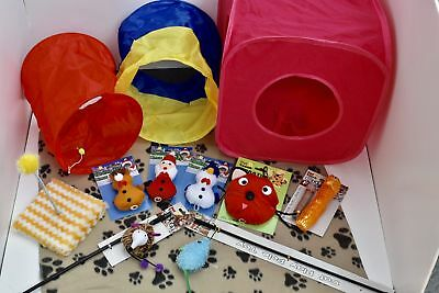 Cat / Kitten Christmas Toy Package - Started Pack, Fun, Small Animals, Play!