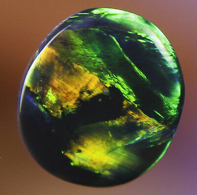 0.5ct ~ CAN YOU AFFORD TO MISS OUT ~  LIGHTNING RIDGE SOLID BLACK OPAL GEM ~a176
