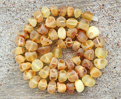 Wholesale 10 Thick bead Baltic amber necklaces for women