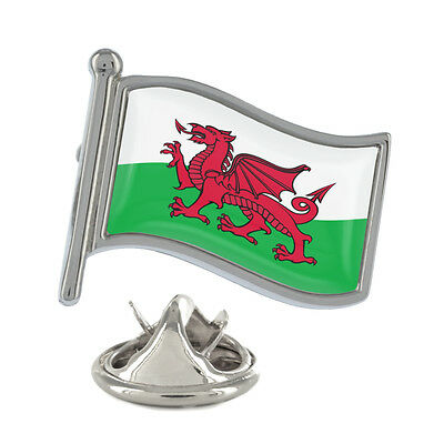 Wales Welsh Leek St David/'s Day Small Round Pin Badge