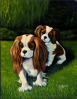 Cavalier King Charles Spaniel Limited Edition Print