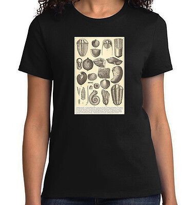 Fossils from Cambrian Period, Geology T-Shirt, Mens Ladies Youth Styles, NWT