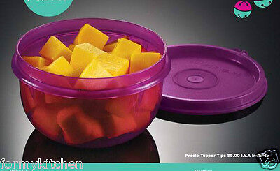 Tupperware Ideal Snack Bowl 8oz. Container Purlicious New