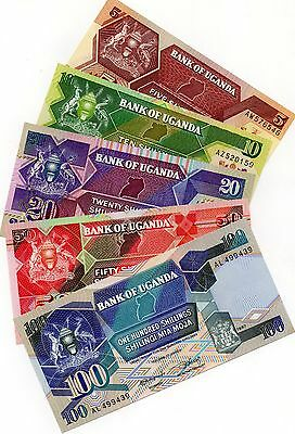UGANDA Africa 5 pcs set 5,10,20,50,100 Shillings UNC all 1987 p-27,28,29,30,31a