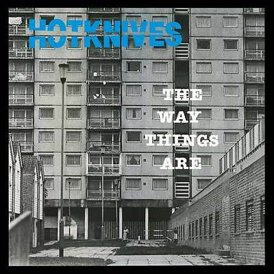 THE HOTKNIVES THE WAY THINGS ARE LP (clear wax)