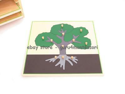 NEW Montessori Botany Material-NEW -PLYWOOD Parts of a Tree Puzzle