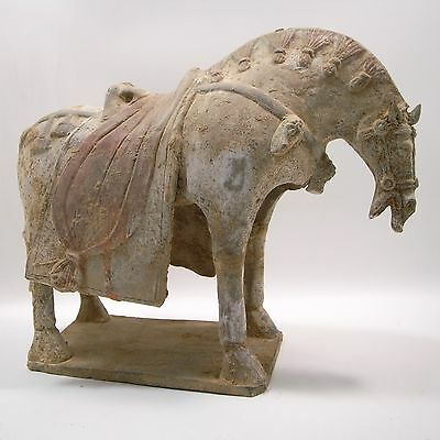 Chinese Tang dynasty (618–907 AD)  painted terracotta horse  33 cm length