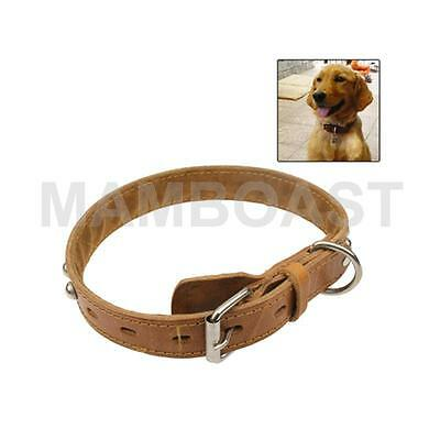 New Style Durable Synthetic Leather Dog Collar Pets Neck Strap Size: 66 x 3.0cm