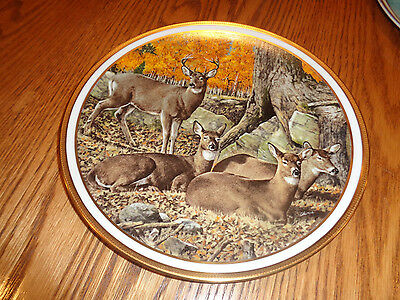 1982 Lenox - White Tailed Deer  American Wildlife Collectible Plate - LE - Adams