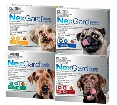 Nexgard Flea & Tick Treatment Chew for Dogs - 3 Pack