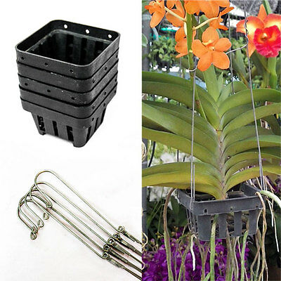 5 set of Black Quality Baskets Orchid Pots 2.7 x 1.7 inch & Wire Hangers