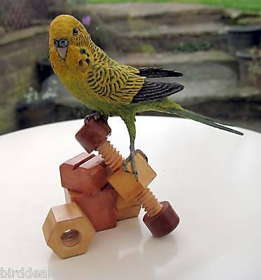 Country Artists Birds of World - Budgie With Wooden Toy