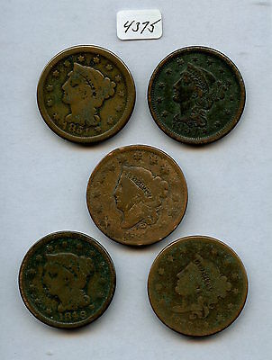 Five Diff. Date Large Cents (#4375)  1831, 1837, 1846, 1851, 1854. All With Read