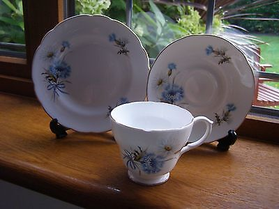 Springfield English Fine Bone China Trio Cup Saucer Plate Cornflowers Blue Lot 2
