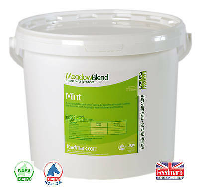 Feedmark Mint for horses - *delicious digestion aid*