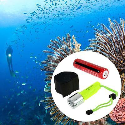 Bright 3000LM CREE T6 Diving LED Flashlight Torch Waterproof + 18650 Battery DA