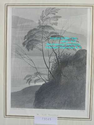 73065-Ruskin-Modern Painters-Malerei-Early Naturalism-Stahlstich-Steel engraving