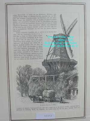 55512-Brandenburg-POTSDAM-Windmühle-Mill-TH 1885