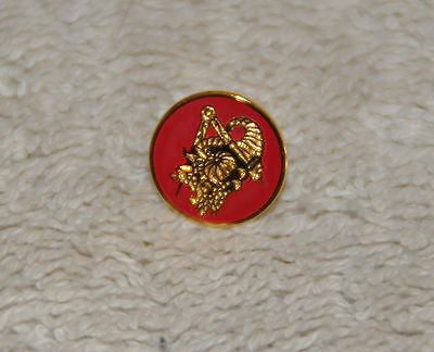 Masonic Provincial District Stewards Gold Plated Lapel Pin (LP030)