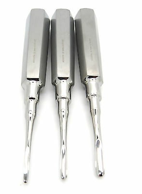3 Pcs Dental Elevator Surgical Root Premium Instrument Steel Curved 2mm,3mm,4mm