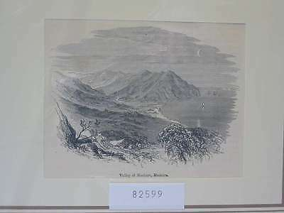 82599-Portugal-Portuguesa-Madeira-Machico-T Holzstich-Wood engraving