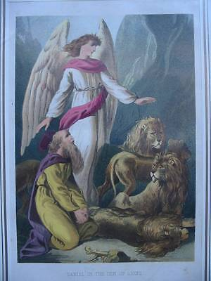 86518-Bibel-Bible-Daniel in the Den of Lions-Engel-Lithographie-Lithography