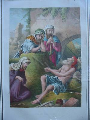 86519-Bibel-Bible-Job and his Friends-Lithographie-Lithography