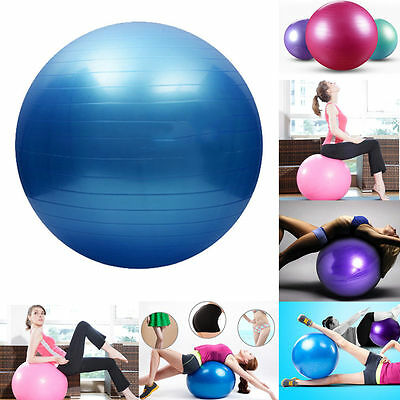 65CM Fitness Exercise Swiss Gym Fit Yoga Core Ball Abdominal Back Workout