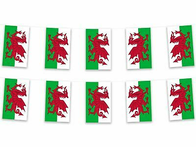 Wales Welsh Dragon Bunting Pennant Flag 5m Fabric Polyester St David Sport Rugby