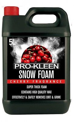 Snow Foam Car Shampoo Wax Vehicle Wash Valet Body Cleaning Shine Cherry Scent