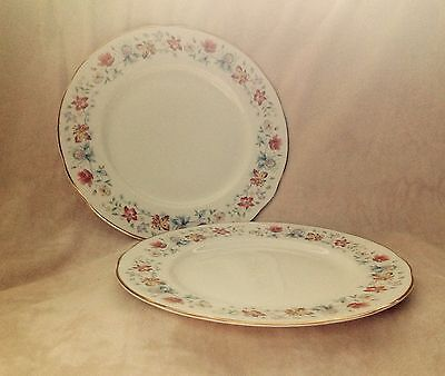 """2 X Vintage Duchess Evelyn  9.5"""" Dinner Plates Very Very Very Good  Condition"""