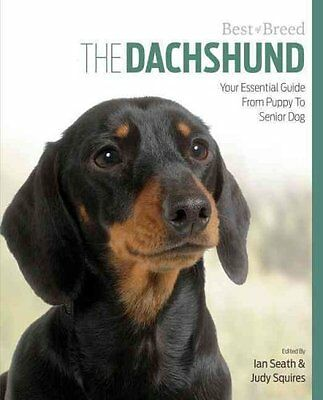 Dachshund Best of Breed by Ian Seath, Judy Squires (Paperback, 2015)