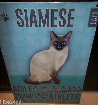 "Siamese Cat 12""x 8"" Medium Metal Sign 30X20Cm With Character Description"