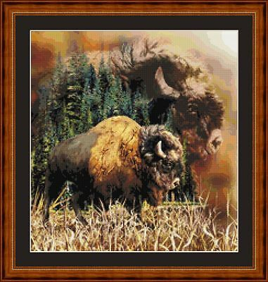 Buffalo - Pdf/printed X Stitch Chart 14/18 Ct Artwork © Steven Gardner