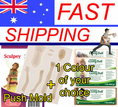 Fairy Push Mold with your colour choice of 1 x Living Doll Polymer Clay