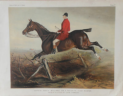 1876 Antique Horse Print - IRISH HUNTER - FOX HUNTING - Chromolithograph