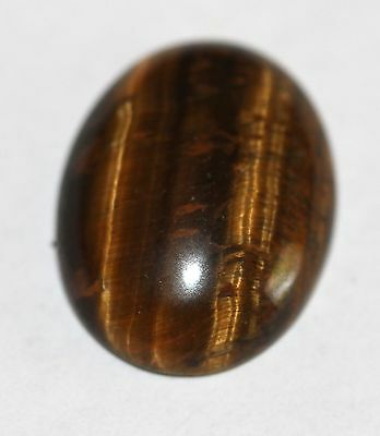 Natural golden Tiger Eye Cabochon 16 x 12mm  TE - 10