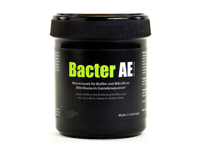 Glasgarten Bacter AE - 70g -  Increases Survival Rate in Shrimp / Breeding Aid