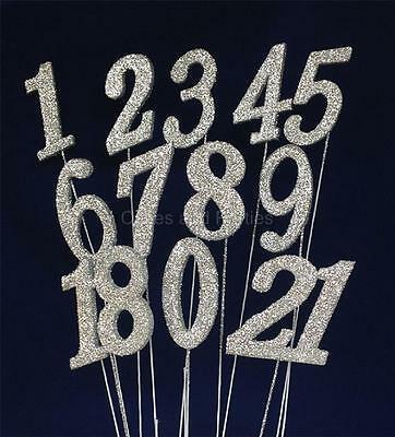 Silver Glitter Numbers On Wire - Cake Decoration, Floristry - New