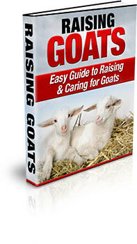 Sale E Book - Raising Goats - Easy Guide To Raising And Caring For Goats On Cd
