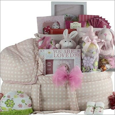 Best Wishes!: Baby Girl Gift Basket