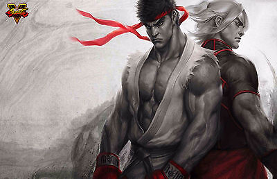 Epic Street Fighter V - Beautiful Wall  Poster - 34 in x 22 in - Fast Shipping