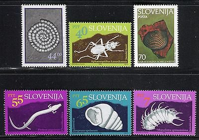 Slovenia 1993/5 Fauna/insects/snail/amphibia/crustaceans/fossil/paleobiology