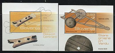 Slovenia 2007/8 Archeological Site/bear Bone Flut/wheel/axle/cultural Heritage