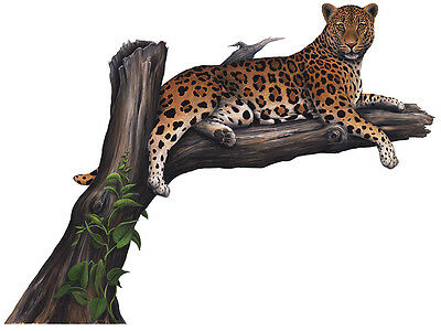 Leopard Wall Stickers Decals Giant Wildlife Mural